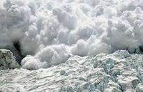 Italy avalanche: Emergency crew pull out 4 more survivors