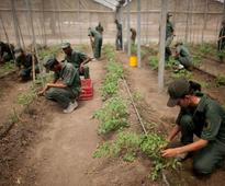 Venezuela: Bishops Oppose Totalitarian Military Takeover of Food Supply