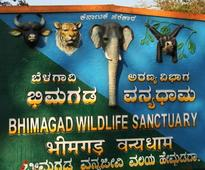Areas around Bhimgad sanctuary declared as Eco Sensitive zone