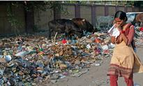 Chikungunya, dengue outbreak in Delhi: How MCDs have failed in keeping the city clean