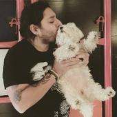 New York Hot Dogs: High-Flying Hotelier Vikram Chatwal Tries to Set Two Pooches Aflame