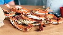 CM Devendra Fadnavis okays Tejas Thackeray's research on crab