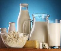 Dairy a Potential Ally in Asian Nutrition Challenges, UN Says
