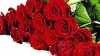 State's first rose society in Belagavi