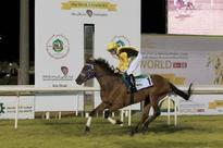 Al Hammadi Wins a Treble in Abu Dhabi