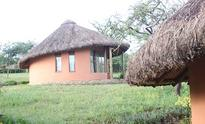 Spoilt for choice at Amazing Kenya Retreat