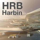 Harbin Airport seeks a hub role for Russia and Siberia, but home airlines are less interested
