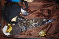 Iranian man held with 1.7 kg hashish from TIA