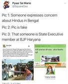 To depict plight of Hindus in Bengal, BJP's Vijeta Malik circulates fake image