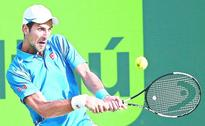 Djokovic eases past Sousa