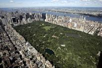Jogger Beaten, Sexually Assaulted in Central Park: Reports