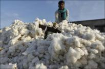 Welspun India shares plummet again on contagion fears in cotton sheet dispute