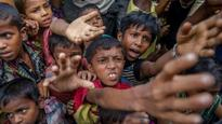 BSF using 'chilli and stun grenades' to stop Rohingya Muslims from entering India