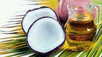 Kuttiyadi coconut park a non-starter