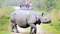 Assam CM Sonowal directs cops to protect Kaziranga rhinos from poachers