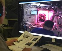 Space Farming: NASA Tests New Harvest Technique To Increase ISS Crop Yield
