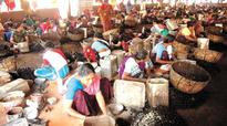 Kollam: Cashew workers to settle scores