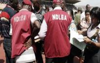 NDLEA Arraigns Man over Export of Diazepam Tablets, Injections