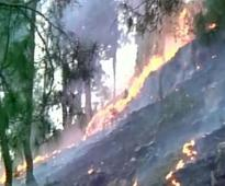 Uttarakhand forest fire: 6 dead, nearly 2000 hectares of green cover destroyed