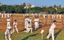 Aravind Adiga's cricket novel Selection Day acerbic and lavish in its treatment