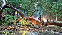 Sudden rains bring Delhi-NCR to a halt