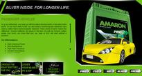 Amara Raja automotive batteries and OEM growth for FY2012-13