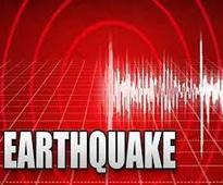 Earthquake of 4.6 intensity hits Himachal Pradesh