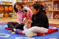 The Edit: Reading to dogs to improve literacy