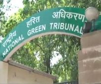 NGT pulls up Karnataka for cutting trees for Yettinahole project