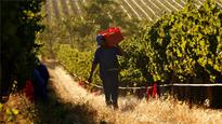 South Africa passes land expropriations bill