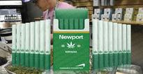 Newport Developed Marijuana Cigarettes Available For Purchase In 2017 Is A Hoax
