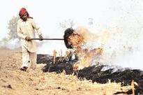 Delhi breathes uneasy as farm fires rage in Punjab, Haryana