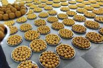 Laddu 'Prasadam' for devotees filled with worms, insects in Andhara Pradesh