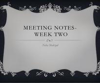 Meeting Notes Week 2