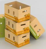 Scientific Work Shows How Corrugated Packaging for Fruit and Vegetables Stops Bacteria