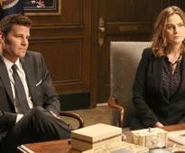 David Boreanaz and Emily Deschanel's Bones Lawsuit: Will It Derail Season 12?