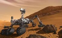 Seashells, sphinx or alien life on Mars?