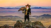 Hollywood Studios Compete to Release Falconry-Themed Films