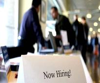 Hiring activity in IT-Software and Insurance sectors registers growth on y-o-y basis