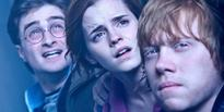'Ron and Hermione would have divorced'
