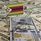 Fear of new bond notes drives rush to equities in Zim