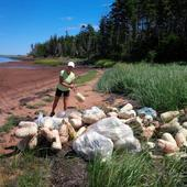 'It's a big task': 800 buoys pulled from uninhabited P.E.I. island