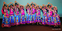 Association of Indians In America Hosts Dance Competition in Chicago