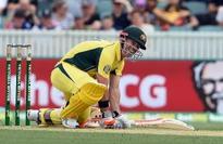 Australia beat New Zealand by 116 runs, clinch series