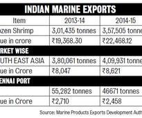 Desi Shrimp Farms Get Made in India Feed