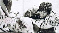 Throwback: 'Daredevil' Big B wrestled a real tiger in Khoon Pasina!