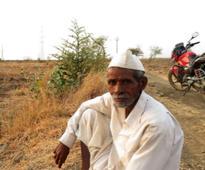 Marathwada Diary: Erratic weather, faulty insurance make sowing season a gamble for farmers