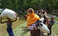 Pope Francis 'to visit Myanmar' as Muslim refugees flee renewed violence