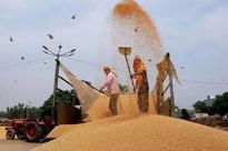 Govt releases Rs 25,834 crore subsidy to FCI this fiscal