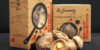 IIM-A alumni see mushrooming business in health food